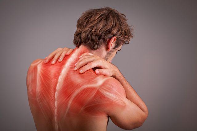 Колет, тянет и ноет. Что делать, если резко заболели мышцы?