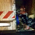 Сотрудники НИП поймали водителя, перевозившего мясо без документов и в антисанитарных условиях (ФОТО)