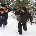 Сэкономить не удалось: приднестровец срубил в лесу сосну и получил за это внушительный штраф