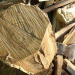 Подросток в Слободзее серьезно поранился во время того, как рубил дрова