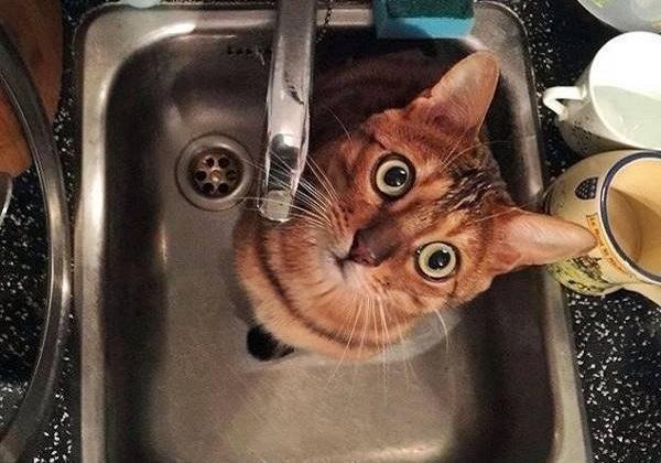 Узнайте, где во вторник в столице не будет воды