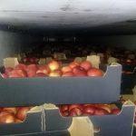 В Смоленскую область не пустили 20 тонн молдавских яблок