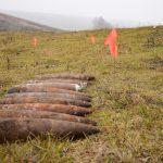 В лесу близ Новых Анен нашли 20 снарядов времён Второй мировой войны (ФОТО)