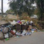 В столице хотят повысить штрафы за незаконный выброс мусора