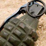Жительница Тирасполя нашла в своём огороде боеприпас