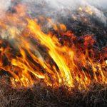 В Гагаузии за неделю ликвидировали 2 пожара