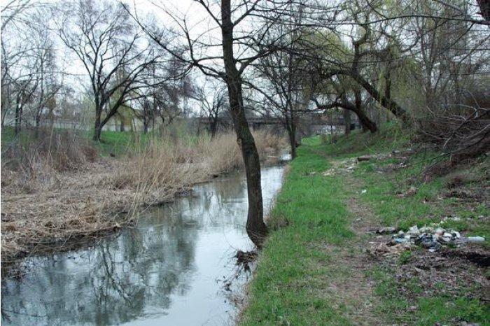 Бык станет чище: в столице организуют акцию по уборке русла реки