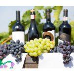 Повод для гордости: в 2018 году вина из Молдовы завоевали рекордное количество медалей