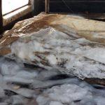 Правоохранители конфисковали 2 тонны рыбы без документов о происхождении (ФОТО)