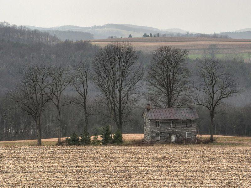 Мартовский сюрприз: на выходных обещают по-настоящему тёплую весеннюю погоду