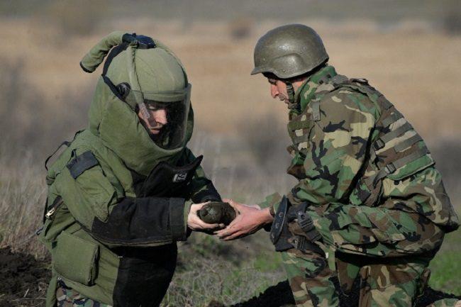 Более 200 снарядов времён ВОВ обнаружили сапёры в поле Штефан-Водэ (ФОТО)