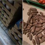 """ШОК: просроченные и гнилые продукты нашли в столовой, """"кормившей"""" учеников в Тогатино (ФОТО)"""