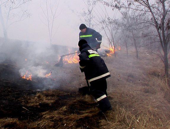 За сутки в Молдове произошло более 50 пожаров: сгорело 850 гектаров растительности