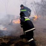 Возгорание растительности: за сутки помощь пожарных потребовалась в 100 случаях