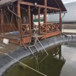 Трагедия в Штефан-Водэ: 5-летний ребенок утонул в бассейне
