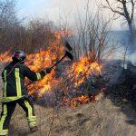 Крупный пожар в Кагуле уничтожил сухую растительность на 20 га земли