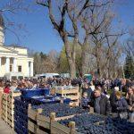 На воскресной ярмарке в центре Кишинева продали более 200 тонн винограда