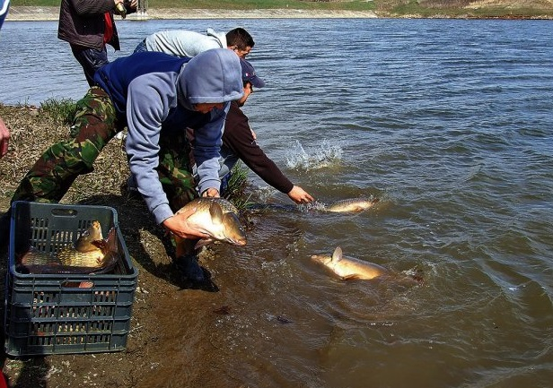 С 15 апреля в Молдове вводится двухмесячный запрет на ловлю рыбы