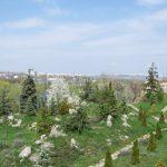 В Ботаническом саду проводится ярмарка, приуроченная к Вербному Воскресенью