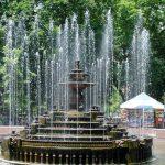 Бесплатные проверки здоровья пройдут в воскресенье в Центральном парке