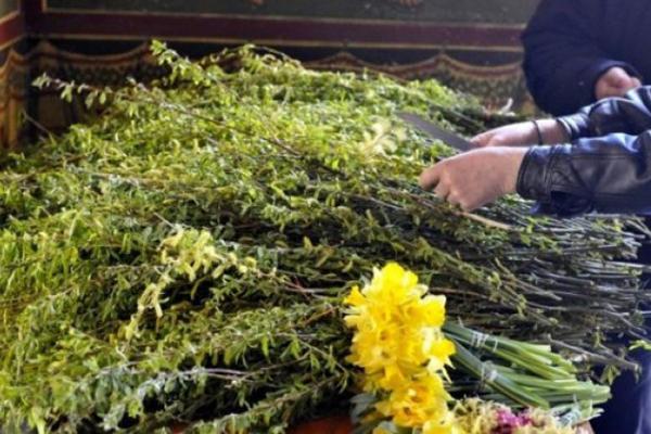 Православные христиане отмечают завтра Вербное Воскресенье