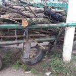 ДТП в Хынчештах: сельчанин врезался в столб на телеге (ФОТО)