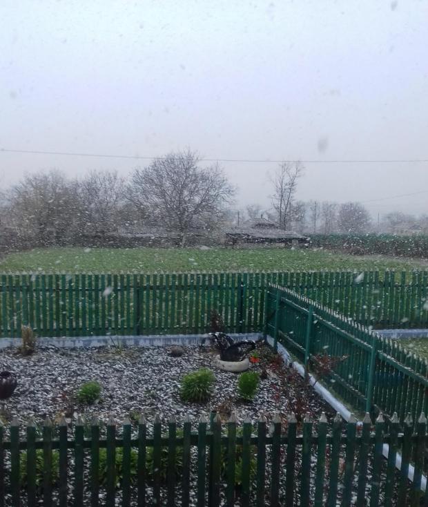На календаре – апрель, а за окном – снег (ФОТО)