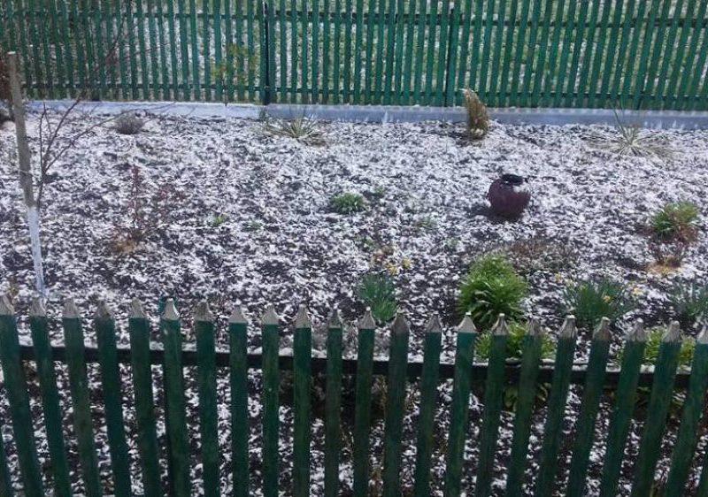 На календаре – апрель, а за окном – снег (ФОТО, ВИДЕО)