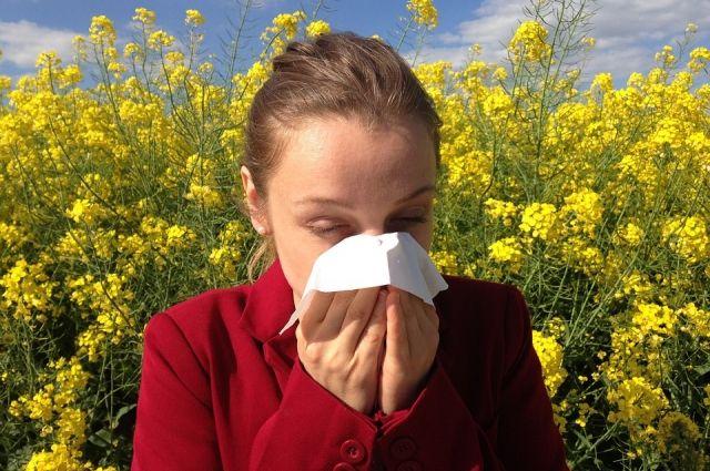 Опасность в воздухе. Как понять, что у вас аллергия на пыльцу?