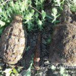 Житель Гагаузии нашёл в огороде целый арсенал боеприпасов (ФОТО)