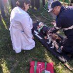 В одном из сёл Гагаузии прошли учения по гражданской защите (ФОТО)