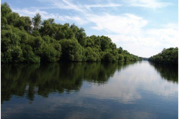 Уровень воды в реке Прут вырос