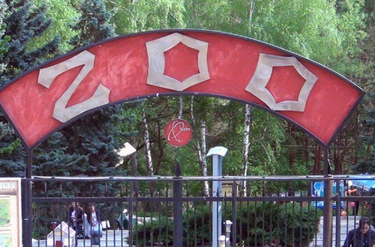 1 июня дети смогут бесплатно посетить столичный зоопарк (ФОТО)