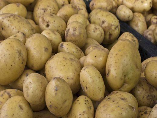 Цена на картофель в Молдове на прошлой неделе взлетела на 62% (ФОТО)