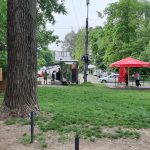 Кожокару: Установка киосков в парках - не развитие города, а продвижение чьих-то интересов