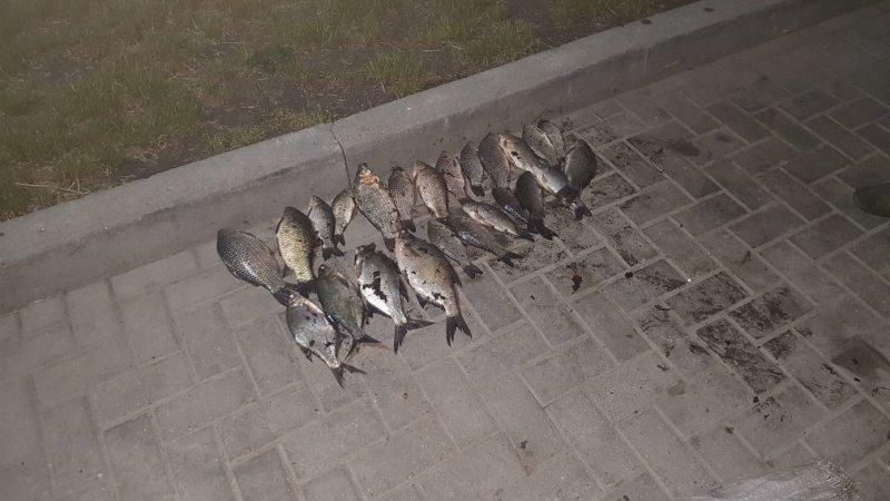2 рыбака понесут наказание за незаконную ловлю рыбы на Днестре (ФОТО)