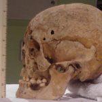 В столице вновь найдены человеческие останки