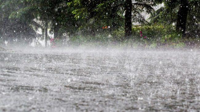 Вчерашний дождь нанёс серьёзный ущерб: уничтожены десятки гектаров сельскохозяйственных культур и затоплены дороги