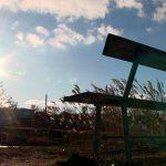 Ветер не утихает: приднестровцев предупредили о предстоящей непогоде