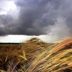 Непогода нанесла серьёзный ущерб жителям Глодянского района (ВИДЕО)