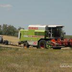 Спасатели призвали аграриев соблюдать пожарную безопасность при уборке урожая хлебов