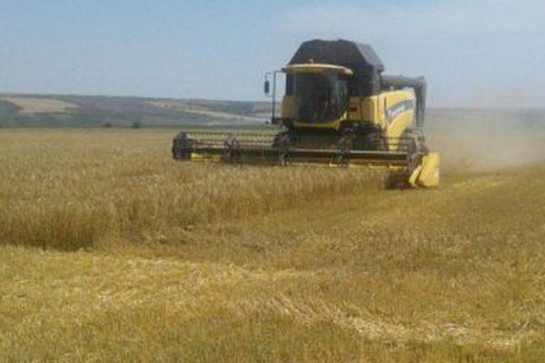 В Гагаузии началась уборка зерновых культур