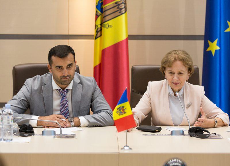 Зинаида Гречаный провела встречу с 17 послами стран ЕС, аккредитованными в Кишиневе (ФОТО)
