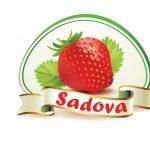 В Садова пройдет ежегодный Фестиваль клубники