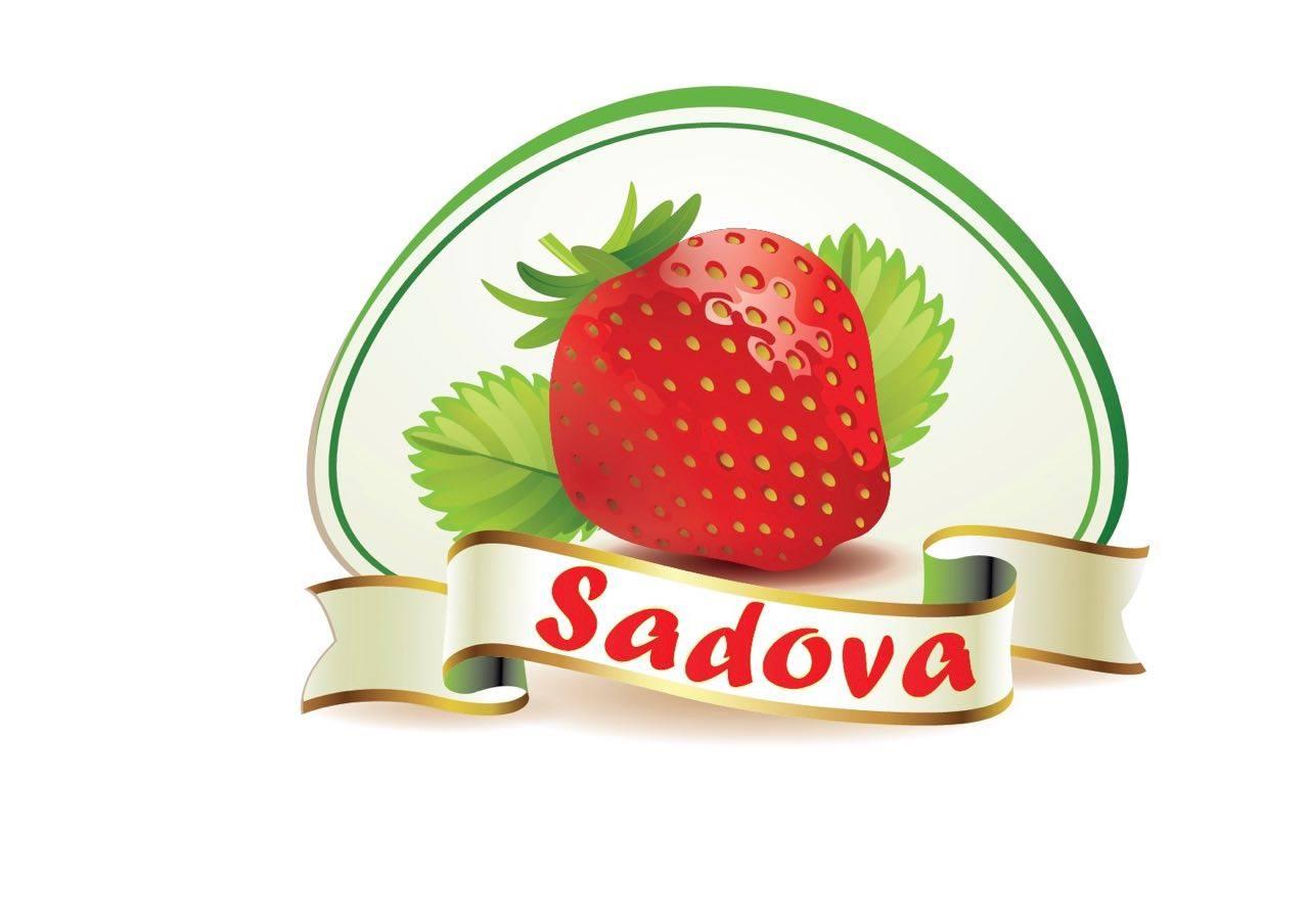 В Садова пройдёт традиционный Фестиваль клубники и мёда (ВИДЕО)