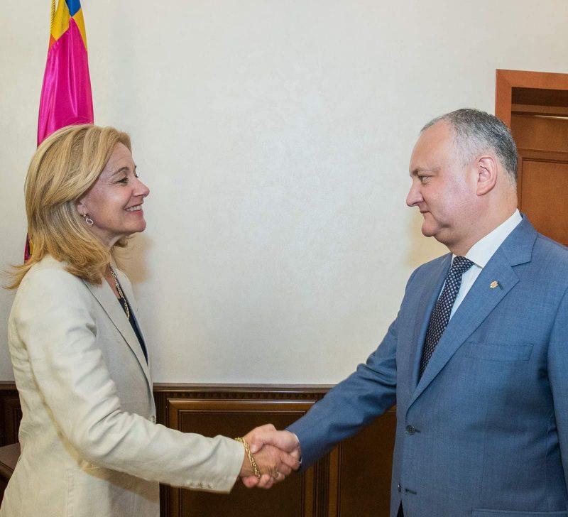 Додон провел встречу с послом Нидерландов в Молдове (ВИДЕО, ФОТО)