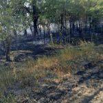 Неосторожность при курении привела к крупному пожару
