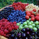 Ярмарка ягод пройдет в воскресенье в столице