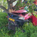Смертельное ДТП близ Фалешт: водитель погиб, врезавшись в дерево