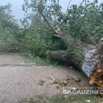 После апокалипсиса на севере стихия обрушилась и на юг Молдовы